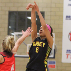 BA Fall in 2OT at Hands of Manchester Mystics in WBBL